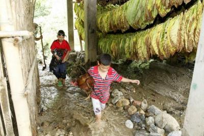 En estos sitios de Bucaramanga y su área metropolitana hay alerta roja por creciente de ríos