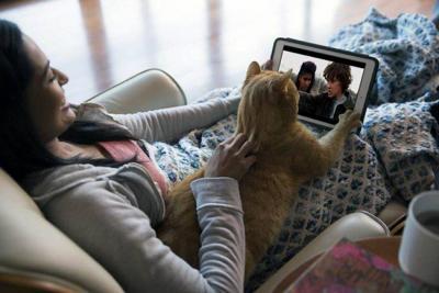 Esto es lo que sucede cuando los colombianos ven series con sus mascotas