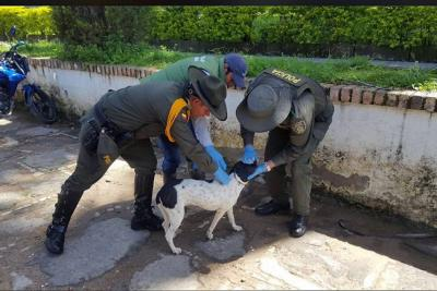 Policía Nacional promueve campañas en la Provincia