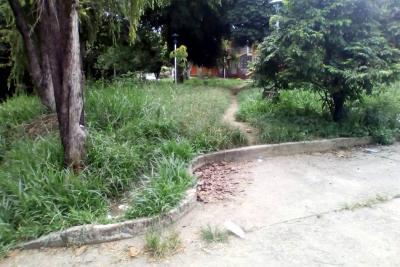 Parques en Lagos II necesitan ornato, alumbrado y dolientes