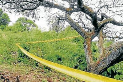 Hallan muerto a otro  líder social en Cantagallo