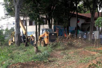 Se reactiva debate en Bucaramanga por tala de 98 árboles en la Escuela Normal
