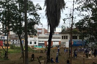 Estudiantes de la Normal de Bucaramanga se unen a las protestas subiéndose a otro árbol