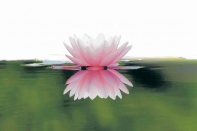 Refleje y asuma una actitud positiva