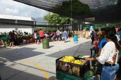 Mercado Campesino llegó en ventas a $120 millones