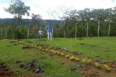 En marcha, la rehabilitación de hogar de paso de fauna y flora