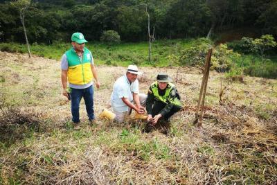 Policía Ambiental sembró árboles en zona rural del Socorro