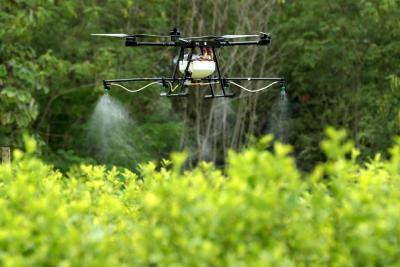 Con drones buscan erradicar cultivos de coca en el país