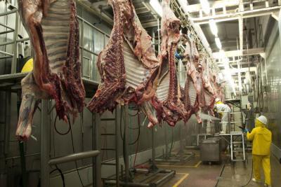 Chile reabriría mercado para carne producida en Colombia