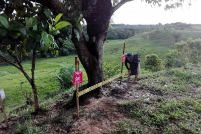 Se definirá el grado de afectación de minas antipersonal en Lebrija