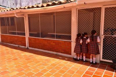 800 estudiantes no han recibido almuerzo del PAE