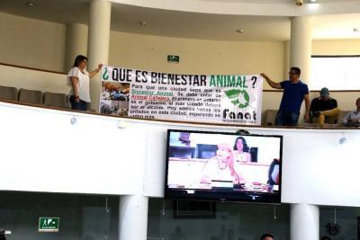 Concejo advierte que Centro de Bienestar Animal de Bucaramanga no se hará en este gobierno