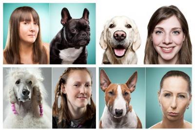 Las mascotas sí se parecen a sus dueños: lo dice la ciencia