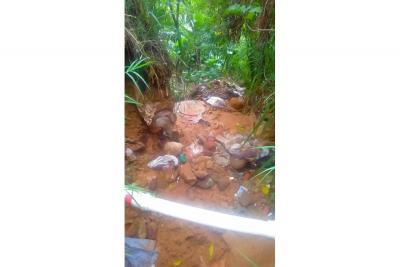 Denuncian grave contaminación de quebradas Las Batatas y Las Pilas