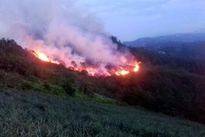 Extinguieron incendio que arrasó con 35 hectáreas de bosque en Santander
