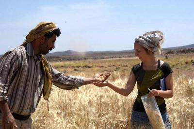 Los humanos hacen pan desde hace más de 14 mil años