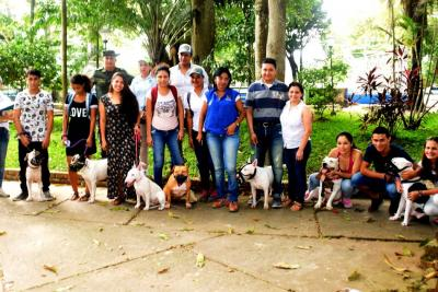 Censados unos 250 caninos  potencialmente peligrosos