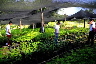 El Sena todavía tiene cupos disponibles en Bucaramanga y su área