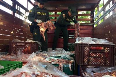 Clausuraron en Bucaramanga matadero clandestino de caballos