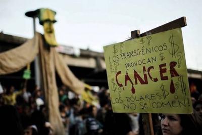 Monsanto tendrá que pagar millonaria multa a enfermo de cáncer