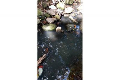 Contaminación en Las Delicias pide atención
