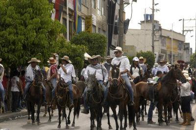 Suspenden siete cabalgatas en Santander por casos de influenza equina