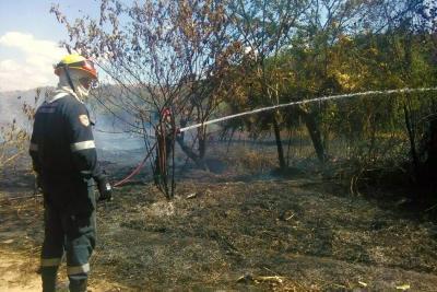 Campañas para prevenir los incendios forestales