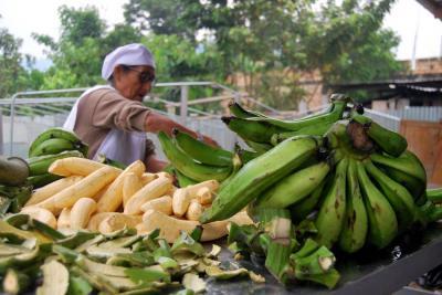 MinAgricultura sostiene que hay que generar política para el campo