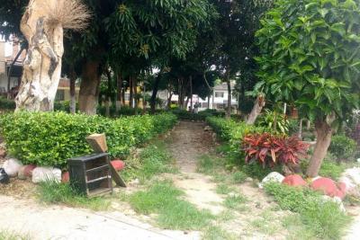 Gestionan el mejoramiento del parque Comuneros en Lagos II