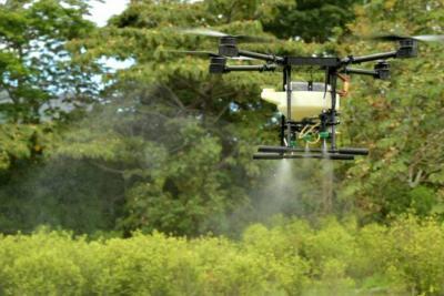 Mindefensa dice que el glifosato es el mejor herbicida