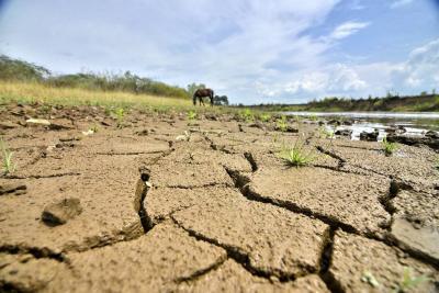 La OMM pronostica que este año se dará un fenómeno débil de El Niño