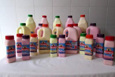'Yogur natural Monegur' le apuesta a la alimentación saludable