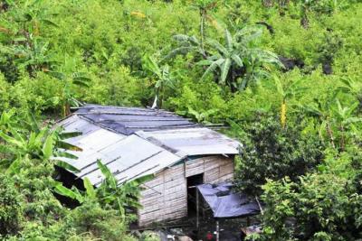"""Venezuela exhorta  a Colombia a """"asumir responsabilidad"""" por daños globales del narcotráfico"""