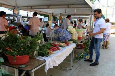 Mercado campesino vuelve hoy al parque