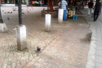 La ciudadanía solicita atención para el parque de Las Palomas