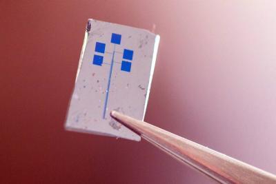 Crean un semiconductor con material orgánico
