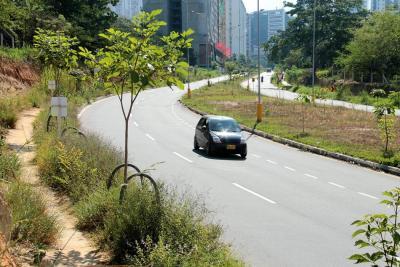 Parte de la preocupación también se debe a que la falta de mantenimiento de zonas verdes facilita que los delincuentes se camuflen entre la maleza.