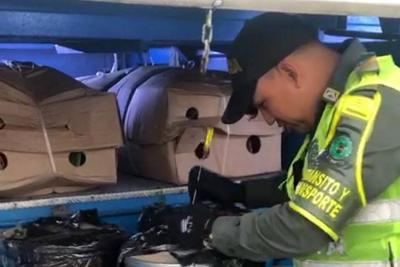 El cargamento fue interceptado por las autoridades en la vía Lizama – San Alberto.