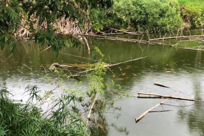 Este proyecto busca salvar las fuentes hídricas de Santander de la contaminación