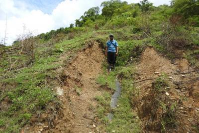 Campesinos de la Serranía Las Quinchas piden ayuda