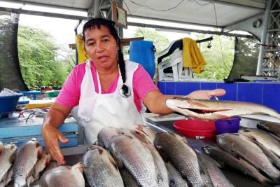 Alarma por cargas de peces contaminados en Santander