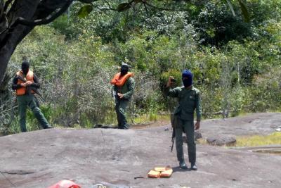 Colombia envió nota de protesta a Venezuela por violación al territorio