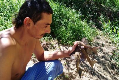 Gironeses se 'rebuscan' peces en el río de Oro