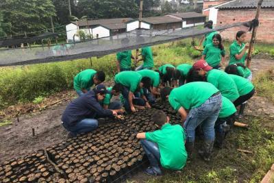 Comité de Cafeteros trabaja en la Provincia Comunera