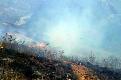 Incendio arrasa con 15 hectáreas en el municipio de Los Santos