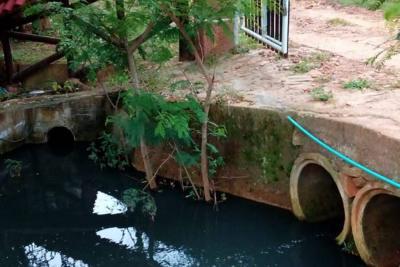 Reportan muerte de peces y contaminación en quebrada de Villanueva, Santander