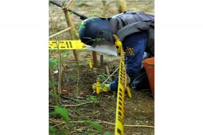 Este año se han reportado que 41 miembros de las fuerzas armadas y 72 civiles se han convertido en víctimas de las minas, de ellos, 105 son hombres.