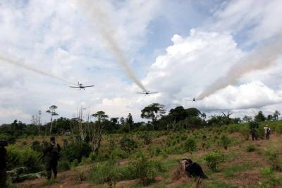 Estado tendrá que pagar por daños del glifosato en Cauca
