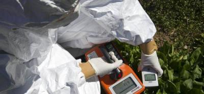 técnico de la organización midiendo la radiactividad de una plantación en la ciudad de Fukushima, a 0 kms de la central nuclear.