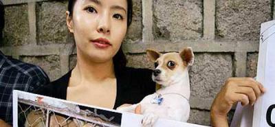China prohíbe un festival en el que se comía perro por protestas en internet